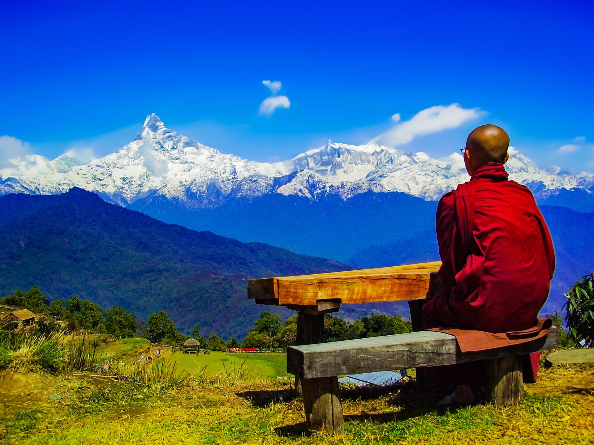 Courier To Nepal Express Delivery Only Dtdc Australia