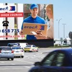 Melbourne Couriers